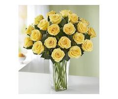 Florist Jacksonville FL- Spencers Florist Jacksonville