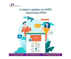 MIPS 2019 Reporting and Data Submissions via Qualified Registry