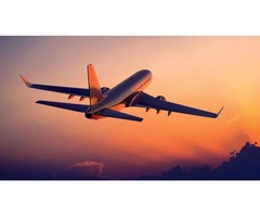 Compare and Search for ORD to FLL Flights at Flightsbird