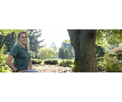 Landscaping Rochester Hills Mi