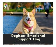 Emotional Support Dog Letter