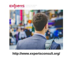 Industry expert firms industry expert network expertsconsult