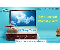 Book Cheap Flights to Orlando Today