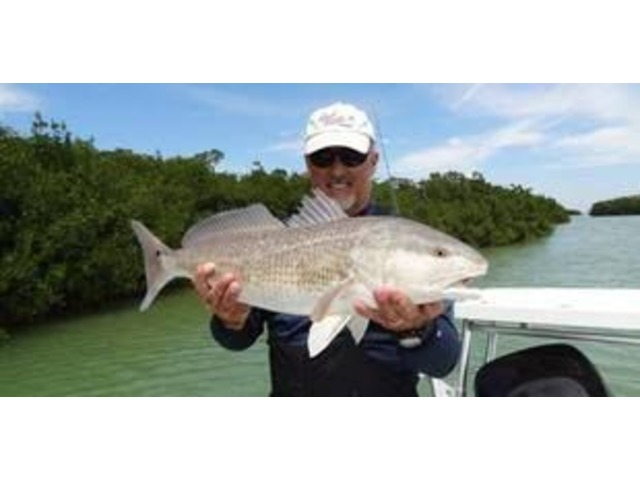Key Largo Backcountry Fishing | free-classifieds-usa.com