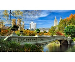 Cheapest Flight to New York - Save upto 40%