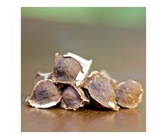 Buy USDA Certified Organic Moringa Capsules