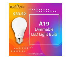 Purchase Now A19 LED Light Bulbs On Sale