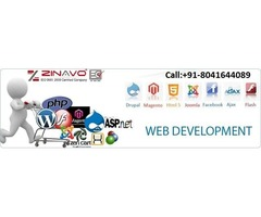 Affordable Website Design and Development Company