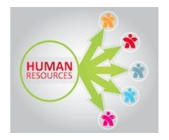 How Does HR Outsourcing Work? | ERG Payroll & HR