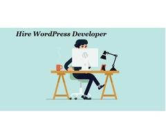 Hire WordPress Developer Company