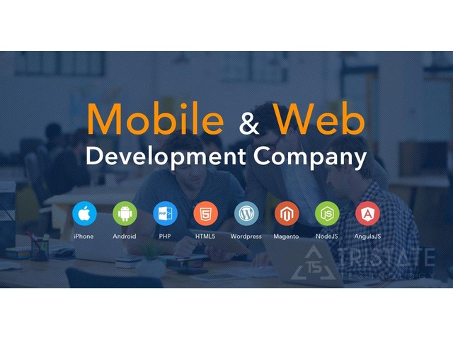 I Do Web Development for Affordable Websites with Web Design | free-classifieds-usa.com