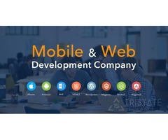 I Do Web Development for Affordable Websites with Web Design
