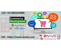 Affordable Ecommerce Web Development Services in Fort Worth