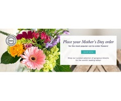 Wholesale Mothers Day Flowers for Sale | Mothers Day Flowers
