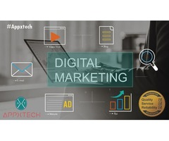 Top Rated Digital Marketing Agency in India & USA | Appxtech