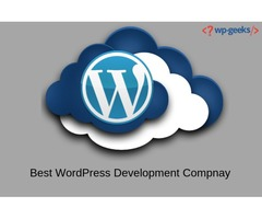Hire Wordpress Developer at the Pocket-Friendly Price in the USA