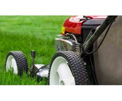 T & M Lawn And Garden | free-classifieds-usa.com