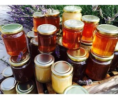 All kinds of bee honey from all over the world