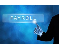 Are Payroll Companies Good? | ERG Payroll & HR