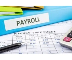 What Are Payroll Companies? | ERG Payroll & HR | free-classifieds-usa.com