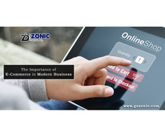 Zonic Digital Inc. E Commerce Website Design