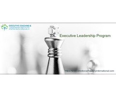 Avail the Executive Leadership Program in California