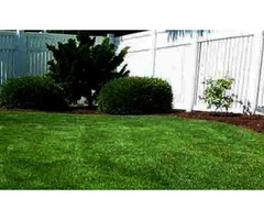 Trimming Y Mulch Landscaping | free-classifieds-usa.com