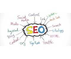 PalmettoSoft – Your Trusted SEO Partner