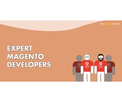 Hire Expert Magento Developers