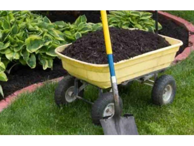 Tip-Top Yard Maintenance Inc | free-classifieds-usa.com