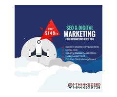 Digital Marketing Services in USA Basic Plan 149$/m- Thinkezseo