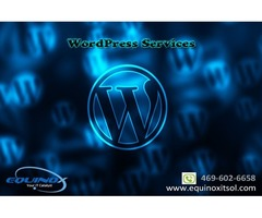 Best Wordpress Development Company in Dallas