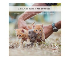 E & S Home Care Solutions | Your Purrfect Choice for Home Care Services