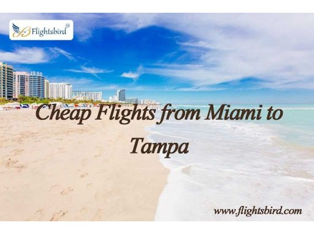 Get MIA to TPA Flights Tickets at Cheapest Price | free-classifieds-usa.com