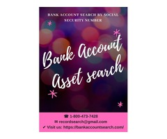 Bank Account Asset Search