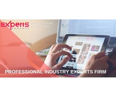 Global Network industry experts services with Expertsconsult