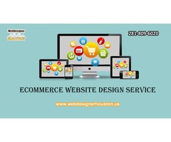 Ecommerce Website Design service
