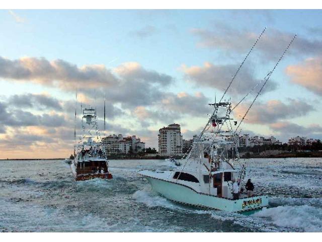 Miami Fishing Charters | free-classifieds-usa.com
