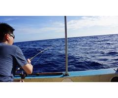 Miami Deep Sea Fishing | free-classifieds-usa.com