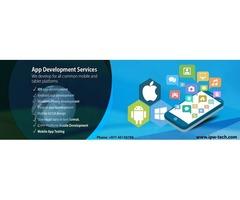 Web & Mobile Development Service