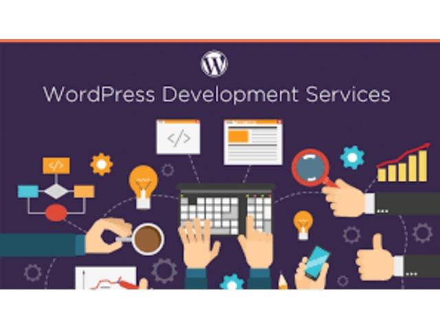 WordPress Development Company | free-classifieds-usa.com