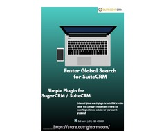 Faster Global Search Integration for SuiteCRM - Solution for Search Problem