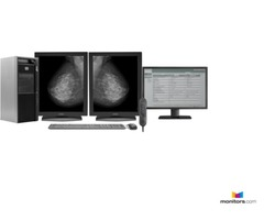 Mammography Reading Bundle |Monitors