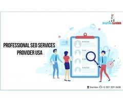 Professional SEO Services Provider in USA