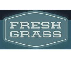 More About NoDepression Singer Songwriter FressGrass Awards
