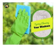 Keep Your Home Clean with the Greenforce Cleaners