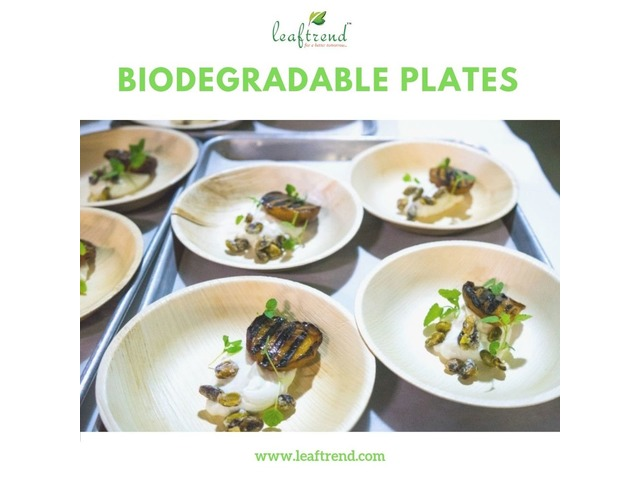 Indoor and Outdoor Party Plates | free-classifieds-usa.com