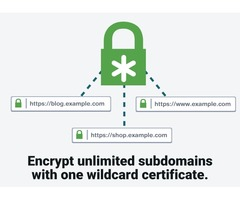 Buy Wildcard SSL Certificates At Affordable Price| TheSSLStreet