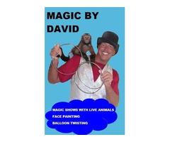 Magic by David