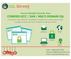 Secure Your Multiple Unique Domains With Multi-Domain SSL Certificate
